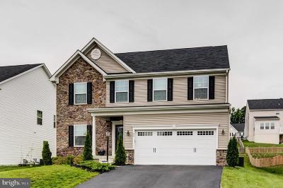 Fredericksburg Single Family Home For Sale: 49 Bayside Drive