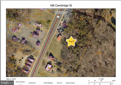 Fredericksburg Commercial For Sale: 166 Cambridge Street