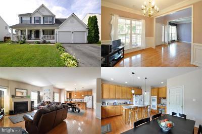 Fredericksburg Single Family Home For Sale: 28 Hamstead Road
