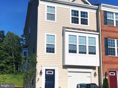 Fredericksburg Townhouse For Sale: 209 Hidden Brook Drive
