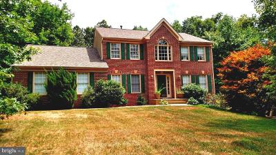 Fredericksburg Single Family Home For Sale: 72 Cool Breeze Way
