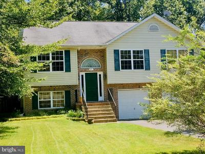 Stafford County Single Family Home For Sale: 27 Breezy Hill Drive