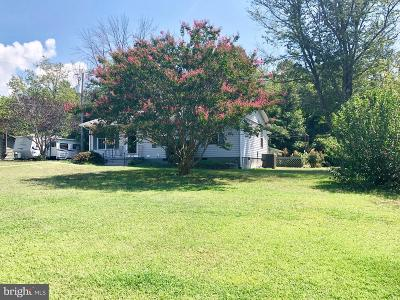 Fredericksburg Single Family Home For Sale: 371 Greenbank Road