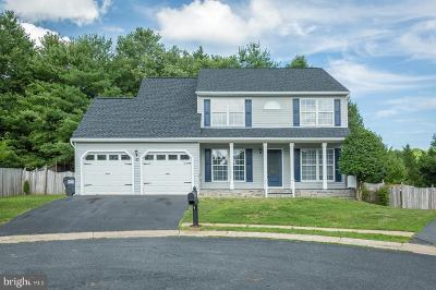 Stafford County Single Family Home For Sale: 10 Tamis Court