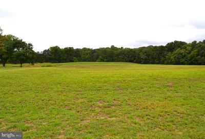 Fredericksburg Residential Lots & Land For Sale: Caisson Road Lot 3
