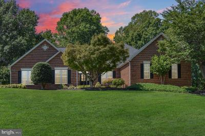 Fredericksburg Single Family Home For Sale: 111 Peacock Station Drive