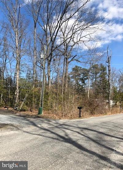 King George Residential Lots & Land For Sale: 373 Piney Forest