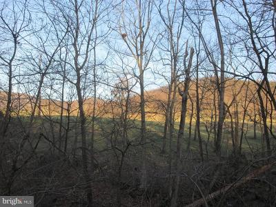 Frederick County, Harrisonburg City, Page County, Rockingham County, Shenandoah County, Warren County, Winchester City Residential Lots & Land For Sale: Jones Farm Road