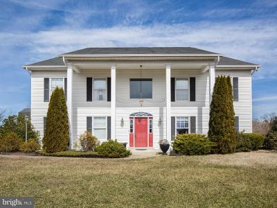 Front Royal Single Family Home For Sale: 196 Stokes Airport Road