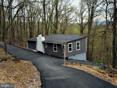 Front Royal Single Family Home For Sale: 241 Bridle Path Road