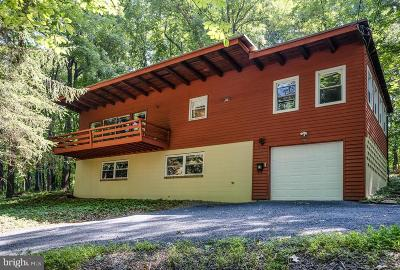 Front Royal Single Family Home For Sale: 983 Massanutten Mountain Drive