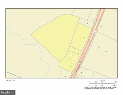 Front Royal Commercial For Sale: 6560 Winchester Road