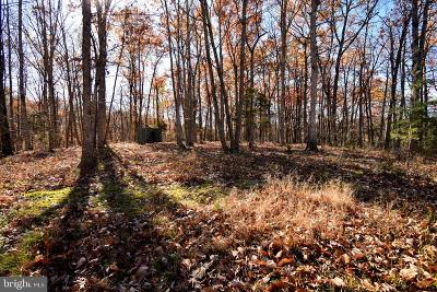 Frederick County, Harrisonburg City, Page County, Rockingham County, Shenandoah County, Warren County, Winchester City Residential Lots & Land For Sale: Turkey Lane