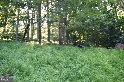 Warren County Residential Lots & Land For Sale: Lot 34 Massanutten Mountain