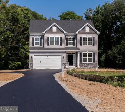 Falling Waters Single Family Home For Sale: 93 Portsmouth Court