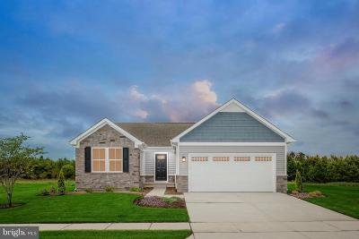 Bunker Hill Single Family Home For Sale: 23 Switchgrass Court