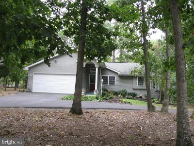 Bunker Hill Single Family Home For Sale: 93 Dime Court