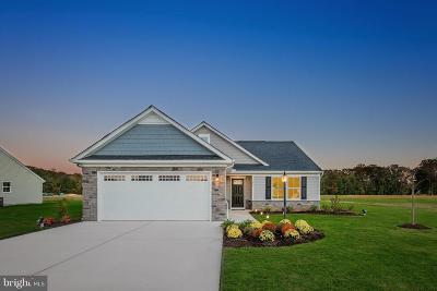 Bunker Hill Single Family Home For Sale: 68 Banks Avenue
