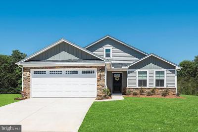 Bunker Hill Single Family Home For Sale: 69 Banks Avenue