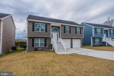 Charles Town Single Family Home For Sale: 115 Nathaniel Dr.