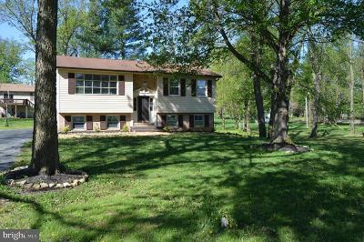 Charles Town Single Family Home For Sale: 676 Tuscawilla Drive