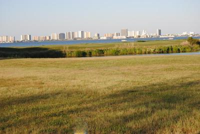 Bishopville Residential Lots & Land For Sale: Lot 36 Fox Ridge Ct
