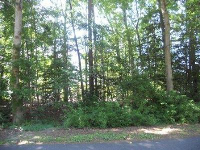 Ocean Pines Residential Lots & Land For Sale: 1 Dove Ln