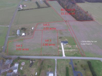 Bishopville Residential Lots & Land For Sale: Back Creek (Lot 5) Rd