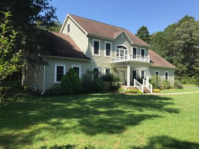 Snow Hill Single Family Home For Sale: 3787 Village