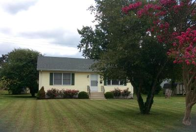 Berlin Single Family Home For Sale: 227 Branch St