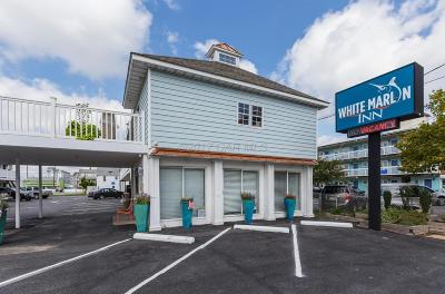 Berlin, Bishopville, Ocean City, Ocean Pines Commercial For Sale: 207 N Baltimore Ave