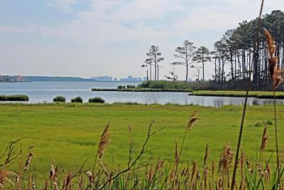 Ocean Pines Residential Lots & Land For Sale: 259 Charleston Rd