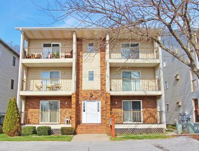 Ocean City MD Condo/Townhouse For Sale: $119,000
