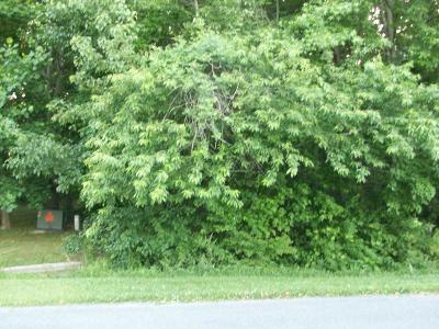 Berlin Residential Lots & Land For Sale: S Dolly Cir