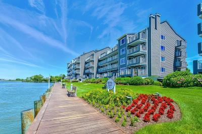 Ocean City Condo/Townhouse For Sale: 427 14th St #306m