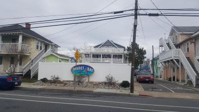 Ocean City Condo/Townhouse For Sale: 205 5th St Ave #42