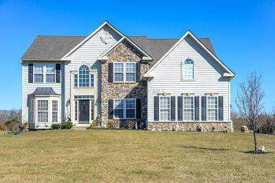 Berlin Single Family Home For Sale: 11732 Winding Creek Dr