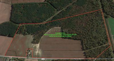 Farm & Ranch For Sale: Bethel Rd
