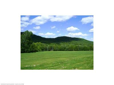 Island Falls Residential Lots & Land For Sale: Lot 41 Pleasant Acres Lane