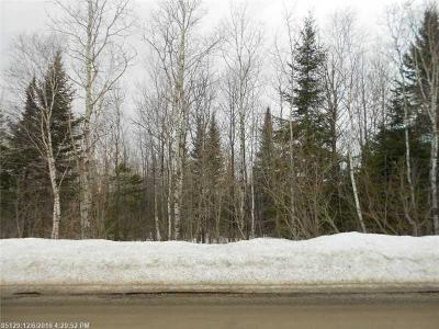 Presque Isle Residential Lots & Land For Sale: 57 Lathrop Road