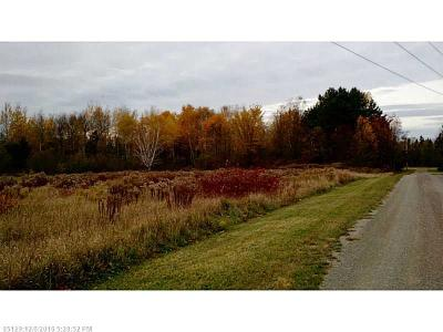 New Limerick Residential Lots & Land For Sale: 0 Riverview Way