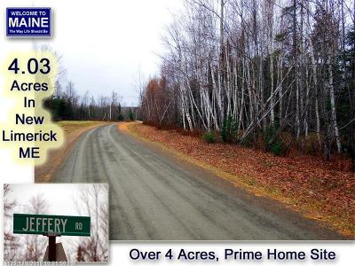 New Limerick Residential Lots & Land For Sale: 20B Jeffery Road