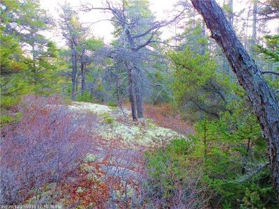 Gouldsboro Residential Lots & Land For Sale: 0 Paul Bunyan Rd