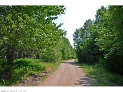 Lakeville Residential Lots & Land For Sale: 10 S Red Pine Rd