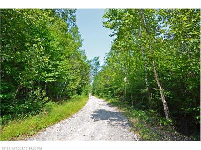Lakeville Residential Lots & Land For Sale: 10 N Red Pine Rd