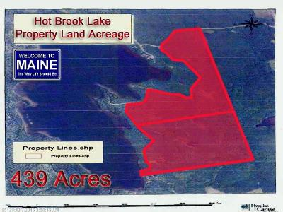 Danforth Residential Lots & Land For Sale: Lot 71 Irish Settlement Rd