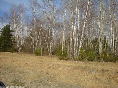 Caribou Residential Lots & Land For Sale: 443 Powers Rd