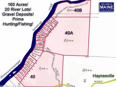 Aroostook County Residential Lots & Land For Sale: Lot 40,40a,40b Bell Field Rd