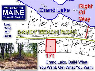 Danforth Residential Lots & Land For Sale: 171 Sandy Beach Rd