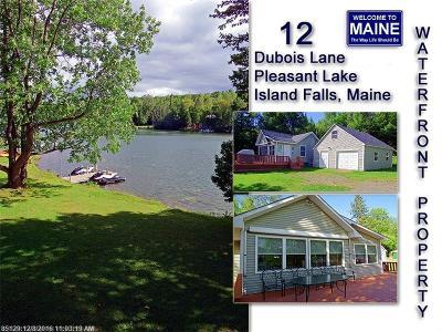 Island Falls Single Family Home For Sale: 12 Dubois Ln
